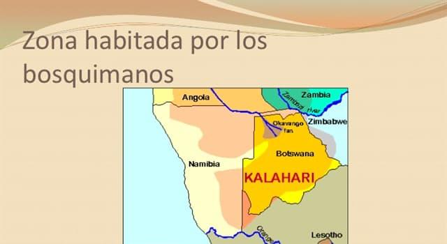 Sociedad Pregunta Trivia: ¿Por qué se quiere expulsar a los bosquimanos de sus tierras?