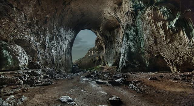 Historia Pregunta Trivia: ¿Qué se encontró en la cueva Lascaux?