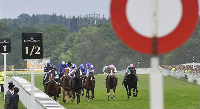 Science Trivia Question: How many yards are there in a furlong?