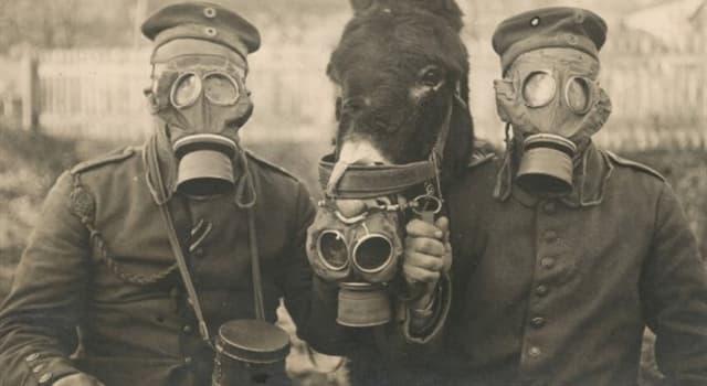 Geschichte Wissensfrage: Welches Land hat zum ersten Mal Giftgase während des Ersten Weltkrieges verwendet?