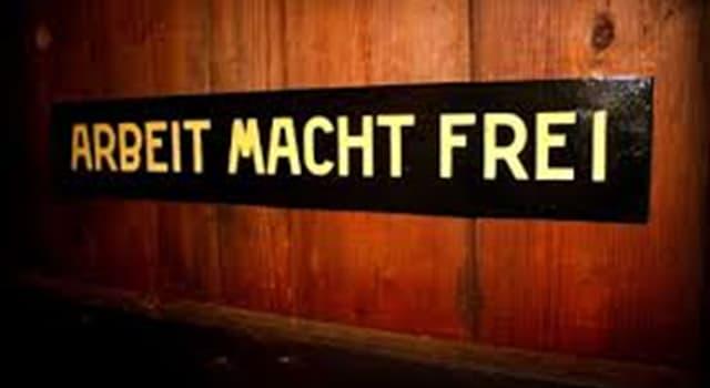 Historia Trivia: «Arbeit macht frei» es una frase alemana que puede traducirse como «el trabajo hace libre». ¿Dónde se la veía habitualmente en los años del nazismo?