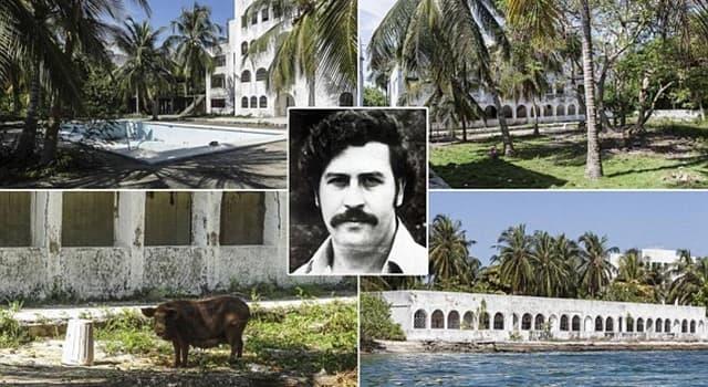 Sociedad Pregunta Trivia: ¿Cómo se llamaba la finca más famosa del extinto narcotraficante colombiano Pablo Escobar Gaviria?