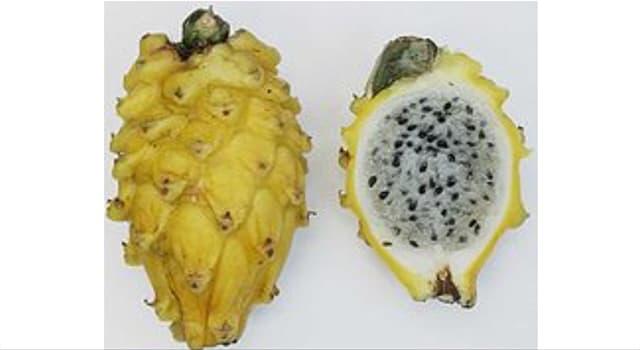 Naturaleza Pregunta Trivia: ¿Cuál es el nombre de las frutas de la imagen?