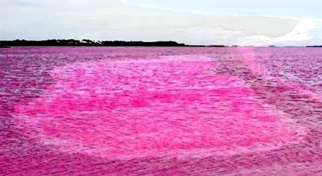 Geografía Pregunta Trivia: ¿Dónde se encuentra el Lago Rosa (Lac Retba)?