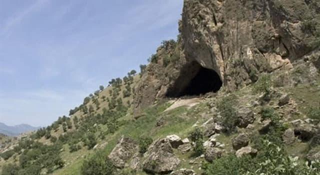 Сiencia Trivia: ¿Qué se encontró en la Cueva de Shanidar entre 1957 y 1961?