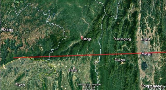 Natur Wissensfrage: Wodurch ist Jatinga, ein kleines Dorf in Assam (Indien), bekannt?