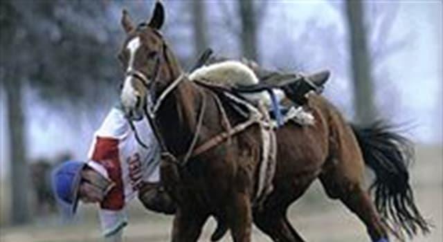 Deporte Pregunta Trivia: ¿ Cuál es el deporte nacional argentino?