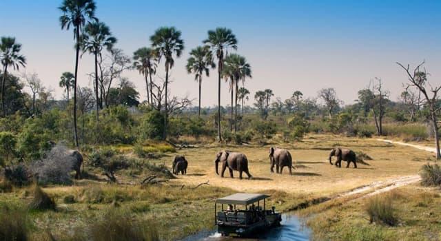 Geografía Pregunta Trivia: ¿Cuál es la capital de la República de Botsuana?