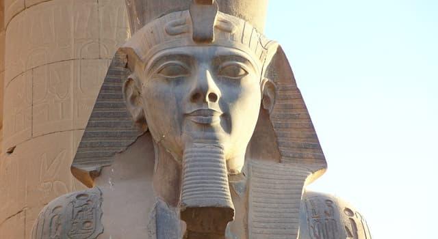 Historia Pregunta Trivia: ¿Cuántos años duró aproximadamente el reinado de Ramses II o Ramses el Grande?