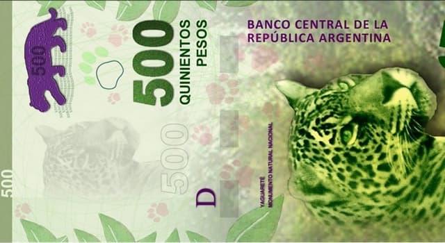 Сiencia Pregunta Trivia: ¿De qué material está hecho el papel moneda de Argentina?