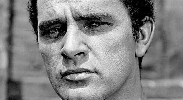 Movies & TV Trivia Question: For which film did Richard Burton win a 1968 Bambi Award?