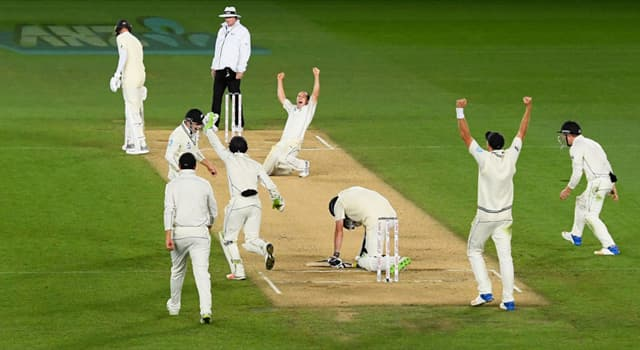 Sport Trivia Question: In a cricket match, how many individual pieces of wood are visible to the spectators when the game is in play?