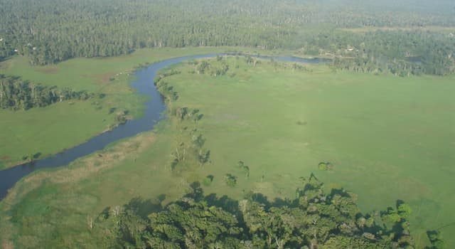 Geography Trivia Question: In which country would you visit the Trans Fly savanna and grasslands?