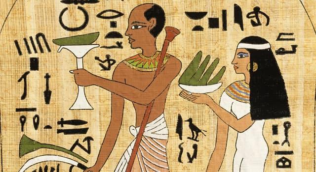 Sociedad Pregunta Trivia: ¿Para qué se usaba en la antigüedad el estiércol de cocodrilo mezclado con miel?