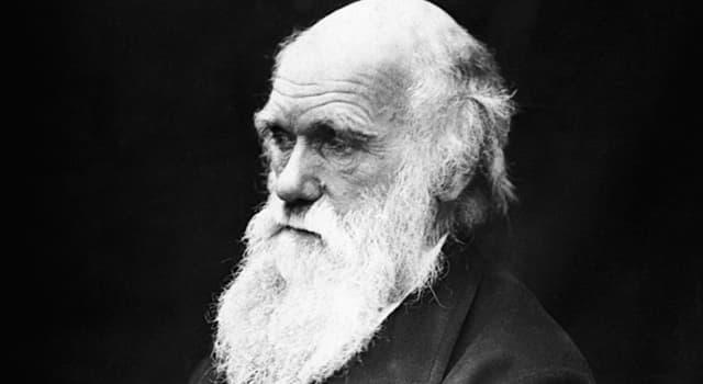 Cultura Pregunta Trivia: ¿Por qué Charles Darwin abandonó sus estudios de medicina?
