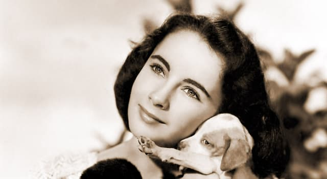 """Movies & TV Trivia Question: What age was Elizabeth Taylor when she was cast in her first starring role in """"National Velvet""""?"""
