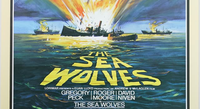 Movies & TV Trivia Question: Which book was the 1980 film, 'The Sea Wolves' based on?