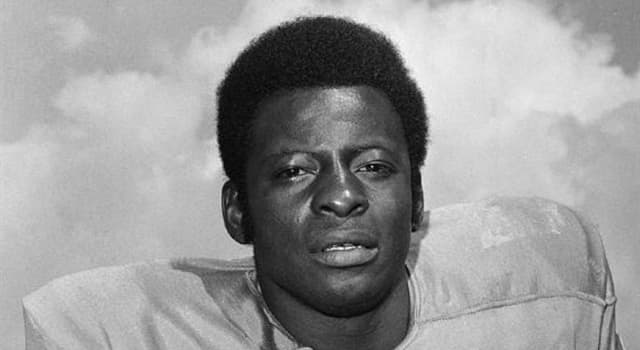 Sport Trivia Question: Which US National Football League team did running back Mel Farr play most of his career with?