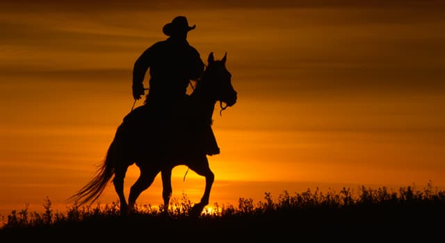 """Movies & TV Trivia Question: Which tough guy starred in and directed the film """"Unforgiven""""?"""