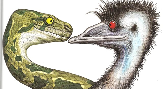 Society Trivia Question: Who created the children's storybook character, 'Edward the Emu'?