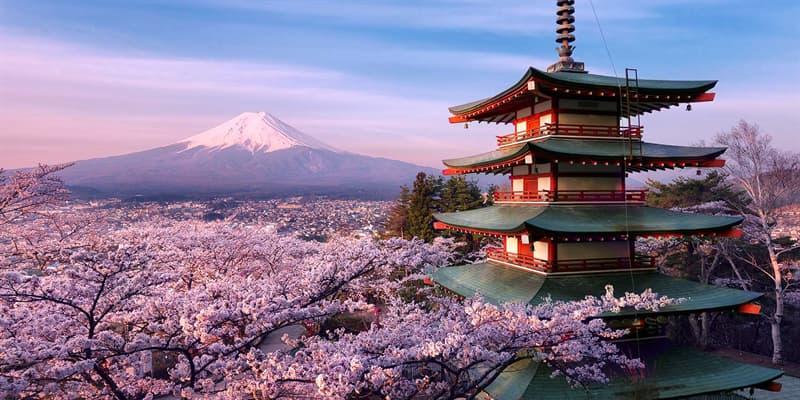 """Культура Вопрос: Что является основным компонентом японского блюда """"Рамен""""?"""