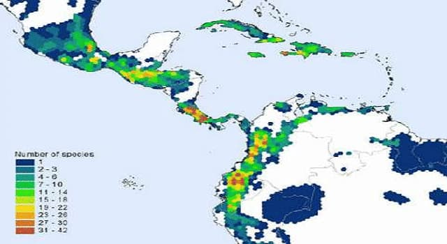 Geografía Trivia: ¿Cómo se le conoce a la ecozona de la Tierra que abarca Sudamérica, América Central, Caribe, Florida del Sur y la zona sur de México?