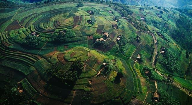 Geografía Pregunta Trivia: ¿Cuál es la capital de la República de Uganda?