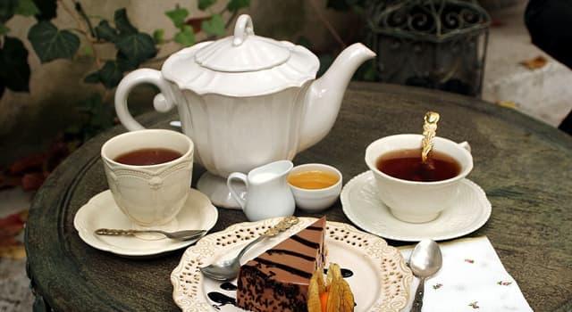 Historia Pregunta Trivia: ¿Cuándo los europeos tuvieron contacto con el té?