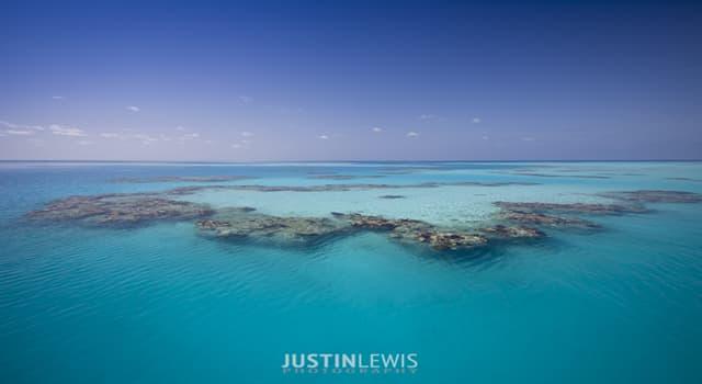 Geografía Pregunta Trivia: ¿De qué océano forma parte el mar de los sargazos?