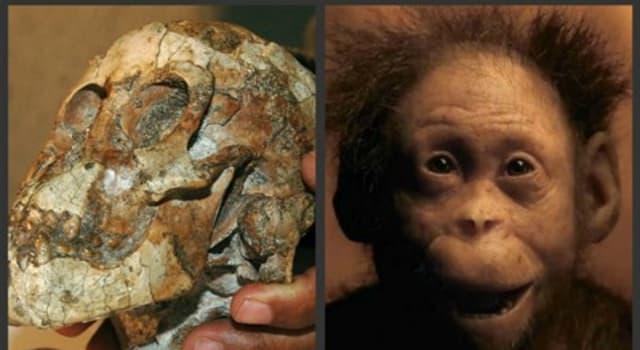 """Сiencia Pregunta Trivia: ¿En qué año descubrieron los restos fósiles de """"Selam"""" la niña de tres años de edad y una antigüedad de 3.3 millones de años?"""