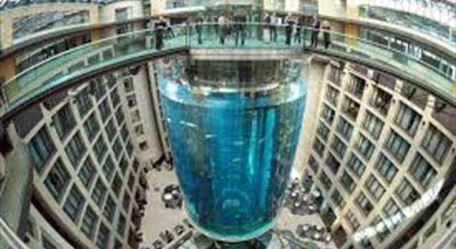 Cultura Pregunta Trivia: ¿En qué ciudad se encuentra el acuario cilíndrico más grande del mundo?