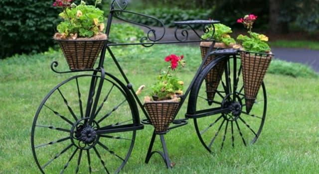 Cultura Pregunta Trivia: ¿En qué siglo fueron inventadas las bicicletas?