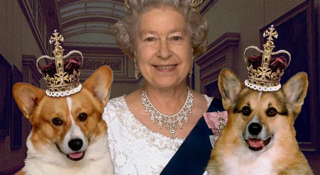 History Trivia Question: Given to her as a present on her eighteenth birthday, what was the name of Elizabeth II's first corgi?