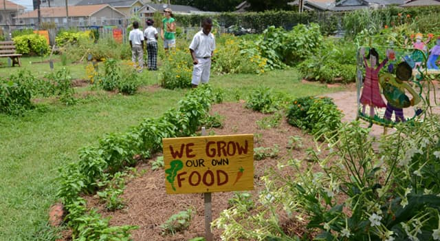 Society Trivia Question: In which US city was the 'Edible Schoolyard' project first begun?