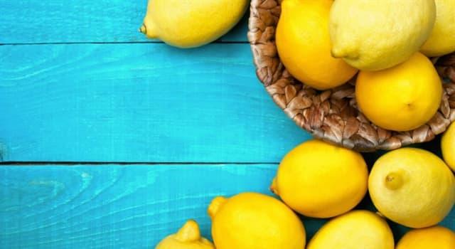 Природа Вопрос: Какой вес у самого большого лимона в мире?