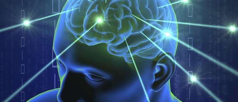Наука Вопрос: Клетки мозга состоят на 60% из чего?
