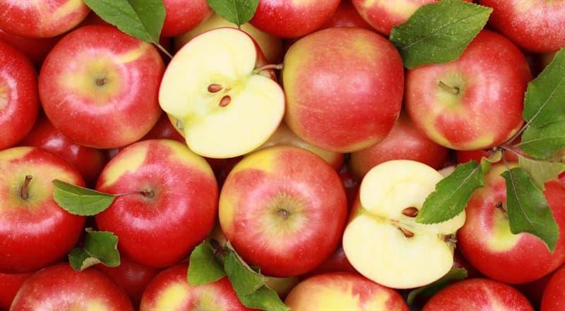 Наука Вопрос: Почему срез яблока постепенно желтеет?