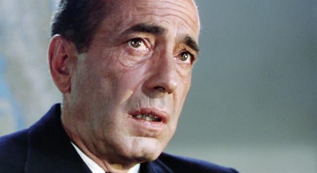 Películas y TV Pregunta Trivia: ¿Por qué película Humphrey Bogart ganó su único premio de la Academia de Cine Americana?