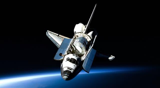 Природа Вопрос: Правда ли, что блоха может разгоняться быстрее чем космический шаттл?