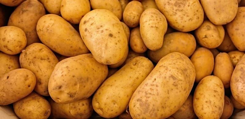 Природа Вопрос: Правда ли, что зелёный картофель ядовит?