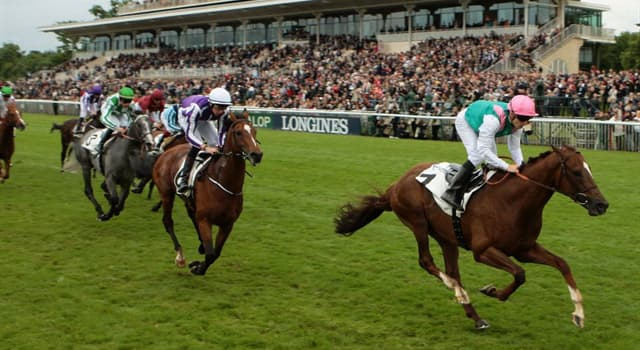 Sport Trivia Question: The Prix du Jockey-Club is held at which race course?