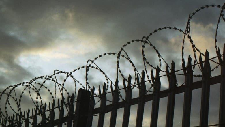 История Вопрос: В каком году произошла последняя казнь через гильотину во Франции?