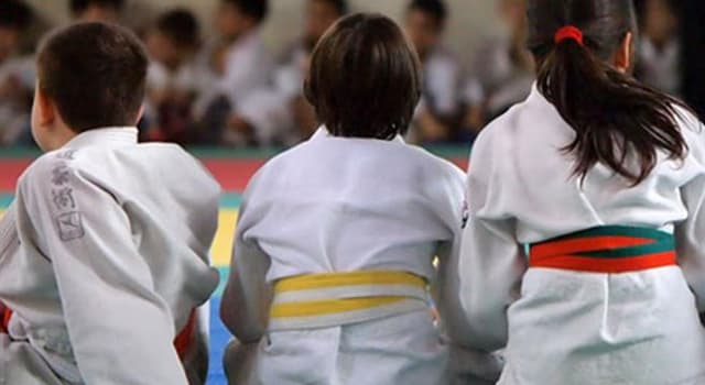 Sport Trivia Question: What country did Judo originate in?