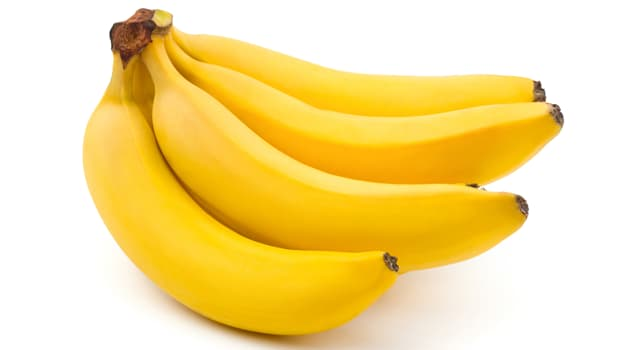 Nature Trivia Question: What is this cluster of bananas called?