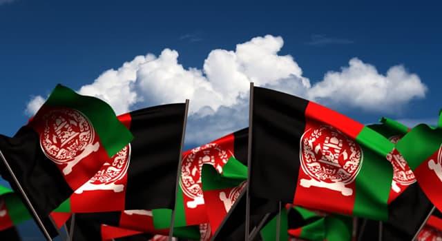 Natur Wissensfrage: Was ist das Nationaltier von Afghanistan?
