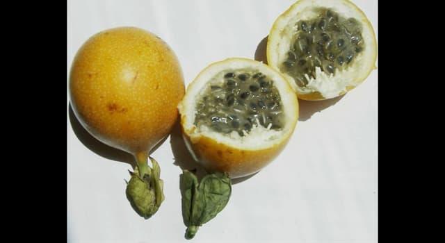 Naturaleza Pregunta Trivia: ¿Cómo se llama la fruta de la imagen?