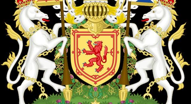 Geografía Pregunta Trivia: ¿Cuál es símbolo floral de Escocia?