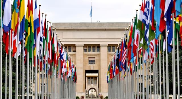 Культура Вопрос: Флаги каких стран идентичны?
