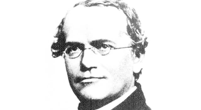 Science Trivia Question: Gregor Mendel was the founder of which science?