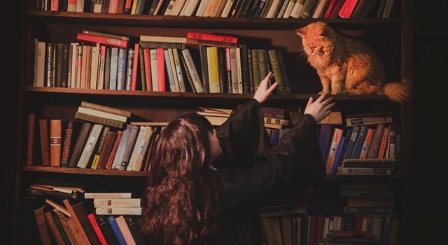 Культура Вопрос: Как в книгах о Гарри Поттере звали кота Гермионы?